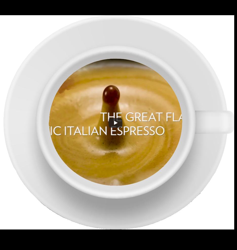 montaje taza la dolce fina 3